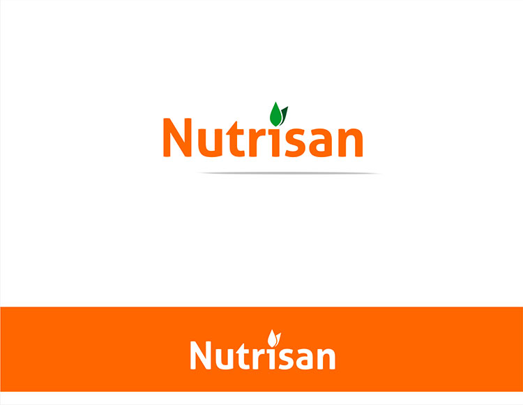 Orange Logo Design by Momo57