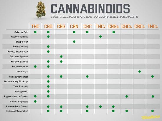 EI_cannabinoids chart