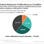 Florida's medical marijuana market has seen substantial growth over a nine-month span and will likely continue in 2019.