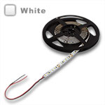 Ribbon Star Ultra White 24V