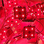 Red Module LED Backlight