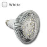 PAR38 LED Bulbs 60 Degree, 17W  - White