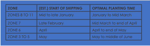 Shipping Times