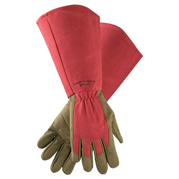 Extra Long Rose Gloves Ruby