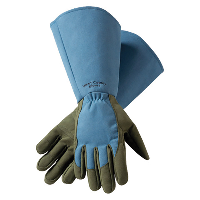Extra Long Rose Gloves