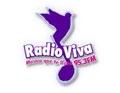 radio viva 95.3