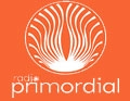 radio primordial curico