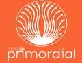 radio primordial 97.9