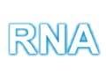 lra1 rna radio nacional