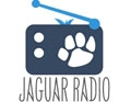 jaguar radio