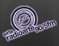 WRTE 90.5 FM Radio Arte