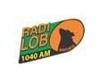 radio lobo 1040