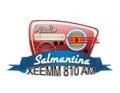 salmantina 810