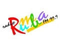 radio rumba en vivo