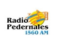radio pedernales 1560 am