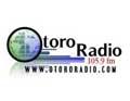 Otoro Radio 105.9 FM