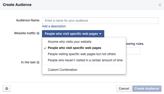 Specific Pages Facebook Custom Audience
