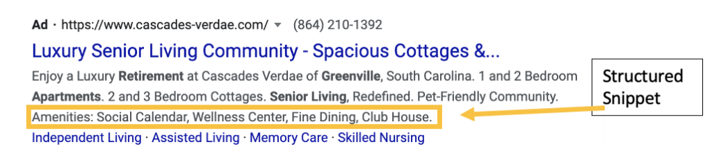 Screenshot of a Google Ad with a structured snippet extension