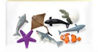 Coastal Animals (9-7029)