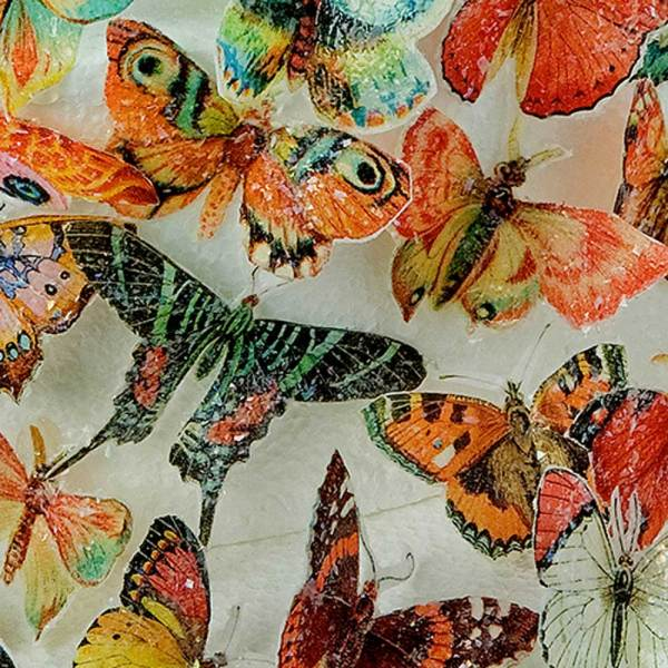 Butterflies Orange & Pink Hues Wafer Paper