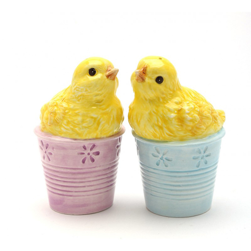 SALE!  Chicks in Pots Salt & Pepper Set