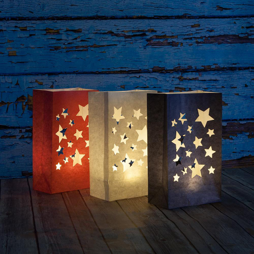 SALE!  4th of July Luminary Bags