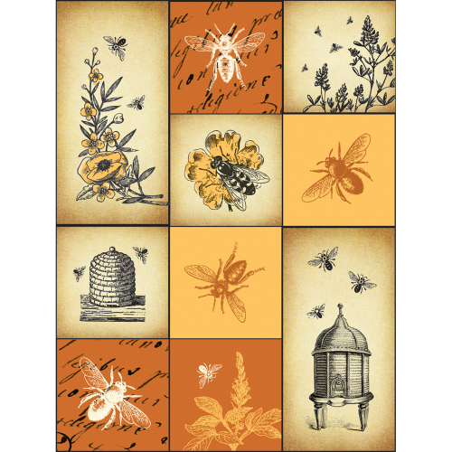 Mighty Bee Magnet Set