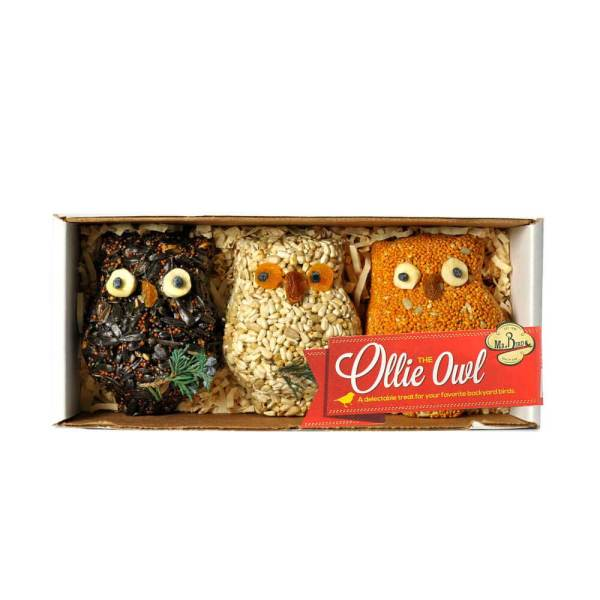 SALE! Ollie Owl Bird Seed Ornaments