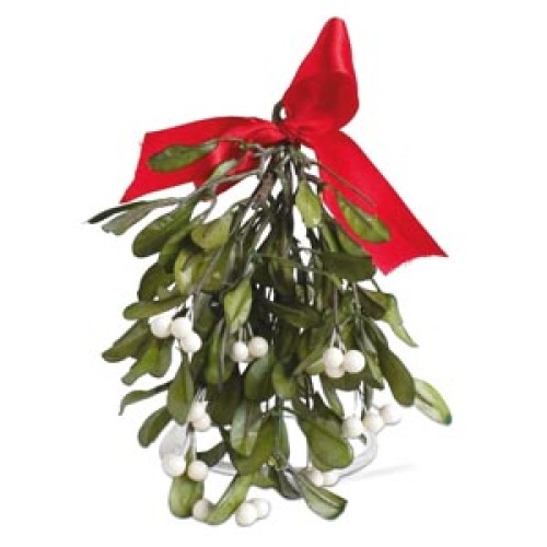SALE!  Mistletoe with Red Bow