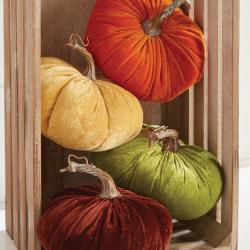 SALE!! Velvet Pumpkin Assortment
