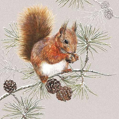 Squirrel in Winter Lunch Napkins