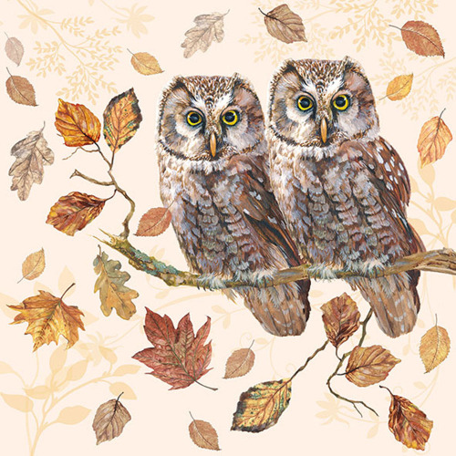 Owl Couple Lunch Napkins
