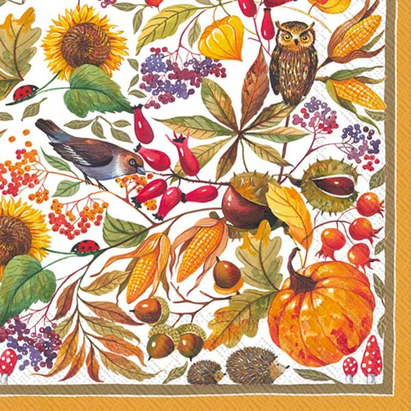 LTD QTY!  Autumn Harvest Beverage Napkins