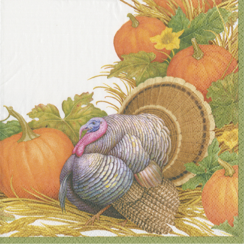 SOS!  Thanksgiving Harvest Lunch Napkins
