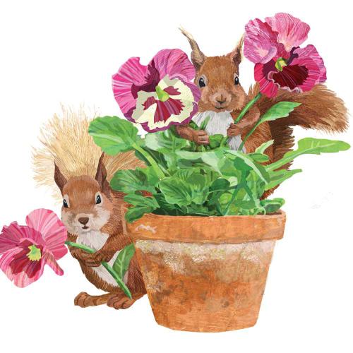 SALE!  Flower Pot Squirrels Lunch Napkins