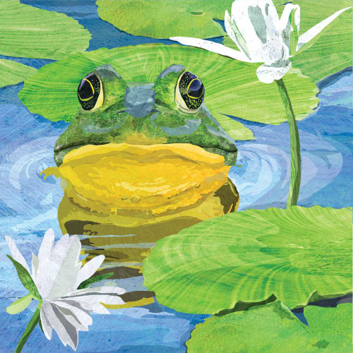 SOS!  Lily Frog Lunch Napkins