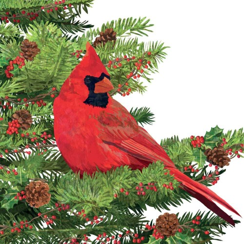 SOS!  Yuletide Cardinal Lunch Napkins