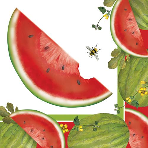 SALE!  Watermelon Beverage Napkins