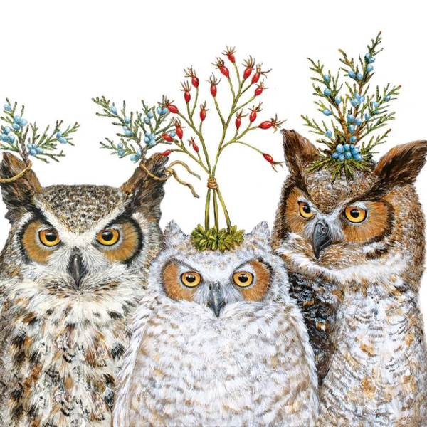 SALE!  Holiday Hoot Lunch Napkins