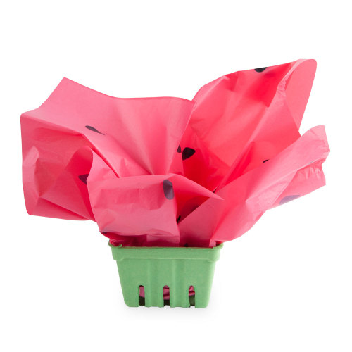 SALE!  Watermelon Berry Baskets