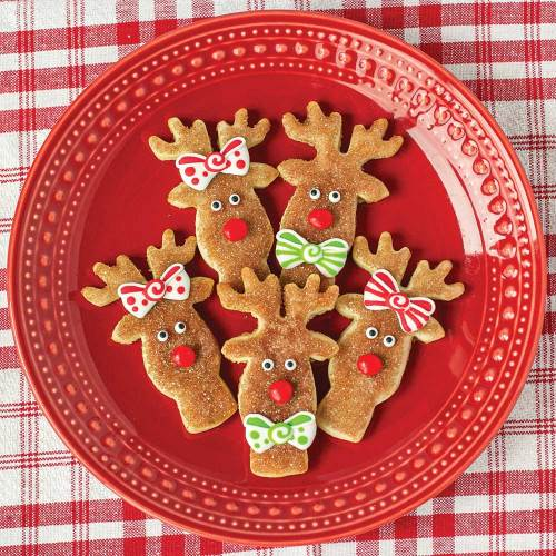 Fun Reindeer Face Cookie Cutter
