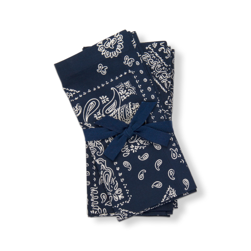SALE!  Blue Bandana Print Napkin Set