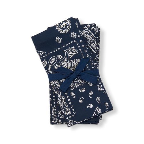 Blue Bandana Print Napkin Set