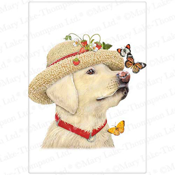 SALE!  Yellow Lab Butterfly Flour Sack Towel