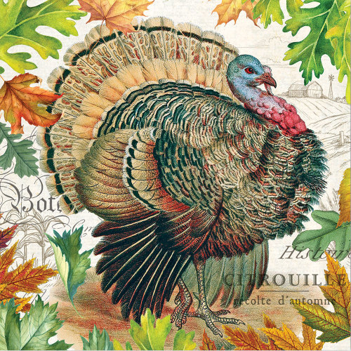 SALE!  Harvest Turkey Lunch Napkin