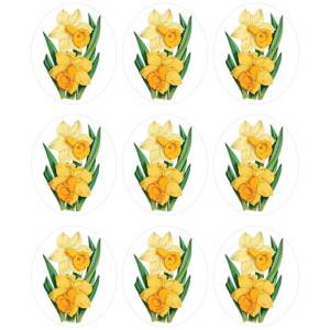 Daffodil Ovals Wafer Paper