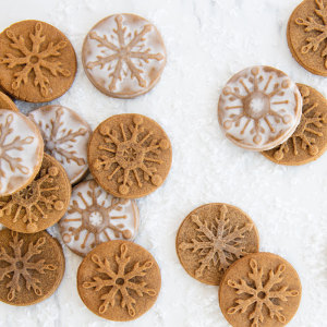 Disney Frozen 2 - Falling Snowflake Cast Cookie Stamps