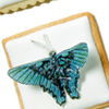 Flying Butterfly Cookies How-To