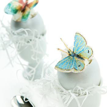 Butterfly Egg Shell Treat How-To