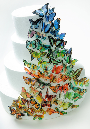 Brilliant Butterfly Wedding Cake How-To